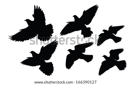 vector silhouette of the doves