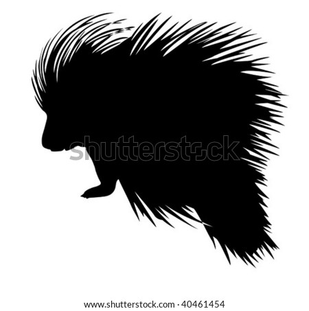 vector silhouette of the porcupine on white background