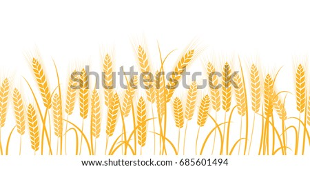 vector silhouette of wheat