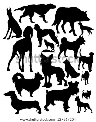 vector silhouettes of different dog breeds