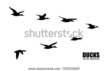 stock-vector-vector-silhouettes-of-ducks