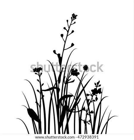 vector silhouettes of flowers