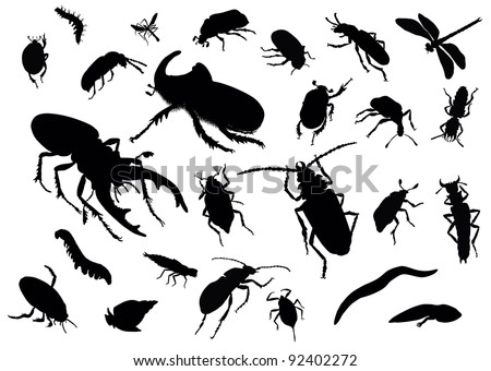 Vector silhouettes of insects - stock vector