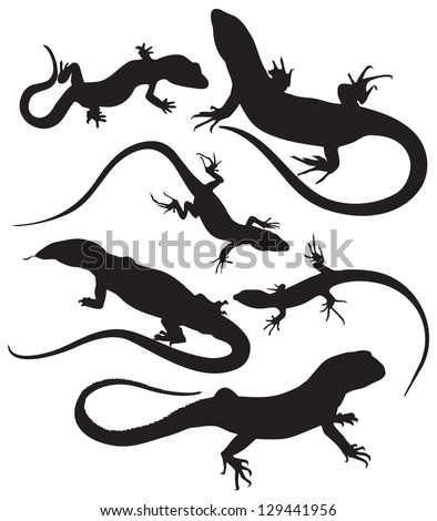 vector silhouettes of lizards