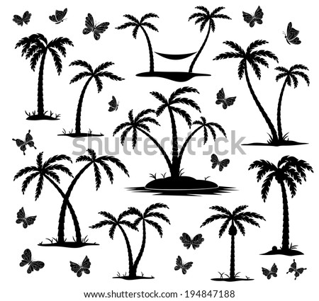 vector silhouettes of palm