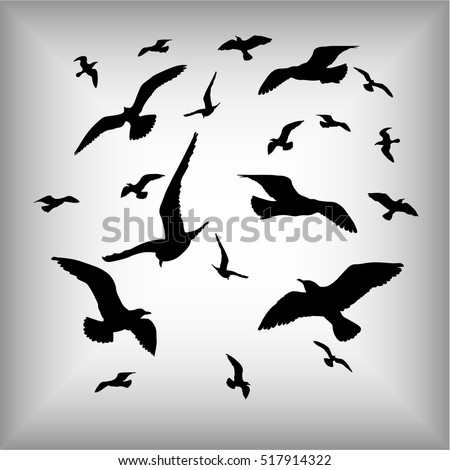 vector silhouettes of sea gulls