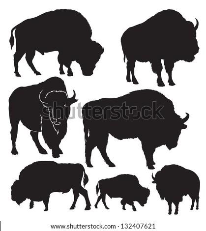 vector silhouettes of the Buffalo