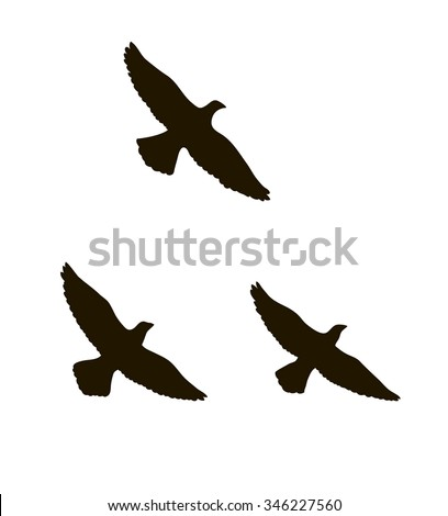 vector silhouettes of three