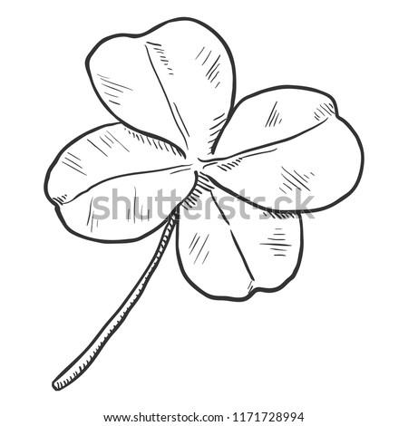 Vector Single Black Sketch Illustration - Four-Leaf Clover