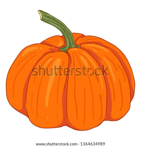 Vector Single Cartoon Orange Pumpkin