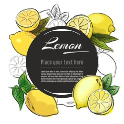 Vector sketch Citron banner on white background. With place for text. Hand drawn sketch fruit graphic design