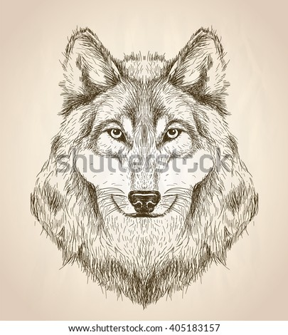 vector sketch illustration of a