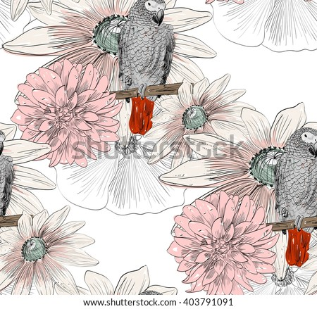 vector sketch of a parrot with