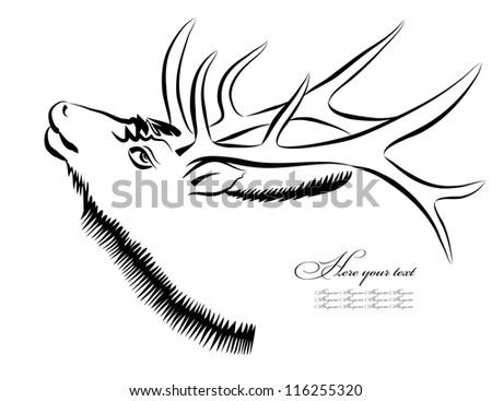 Vector sketch of head of an deer on white background. Hand draw.