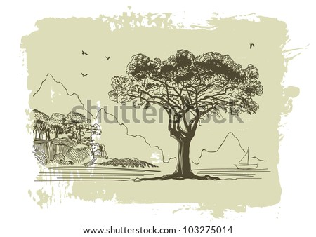 Vector sketch of olive trees
