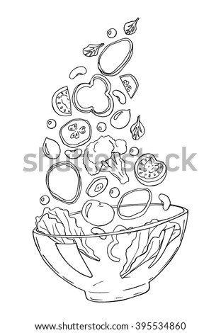 vector sketch of salad with