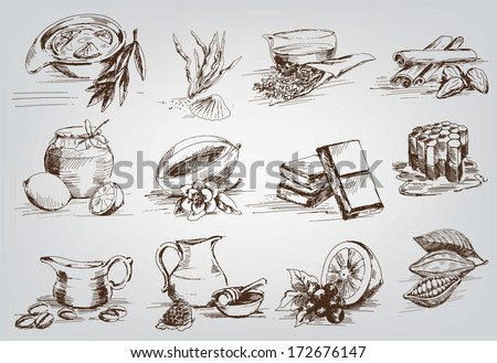 vector sketches natural ingredients used in pharmacology