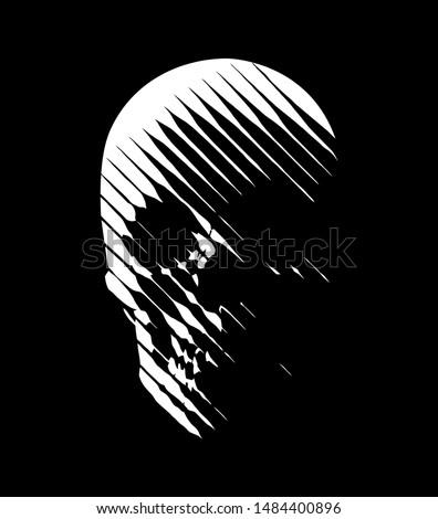 vector skull line art