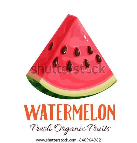 Vector slice watermelon. Fruit illustration for farm market menu. Healthy food design