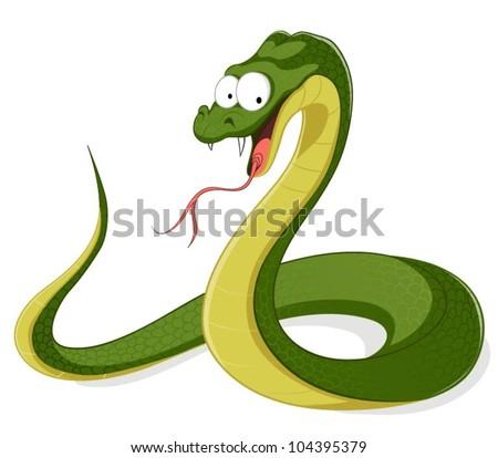 vector snake isolated on white