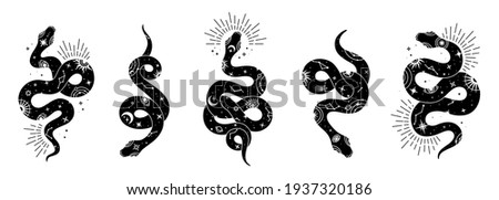 Vector snake set of mystical magic objects- moon, eyes, constellations, sun and stars. Spiritual occultism symbols, esoteric objects.  ストックフォト ©