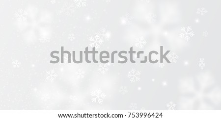 vector snowflakes in different