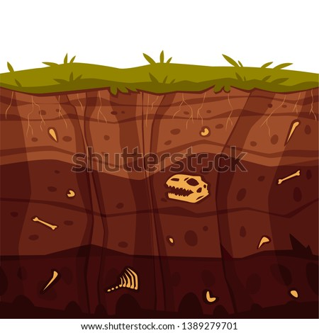 Vector soil ground layers with grass, underground fossil dinosaur bones texture. Subterranean landscape for game map design. Layered earth surface, geological natural clay. Foto d'archivio ©