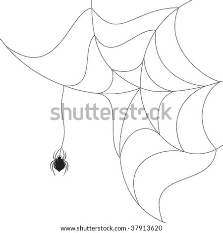 Web Spider Vector Vector Spider Spinning a Web