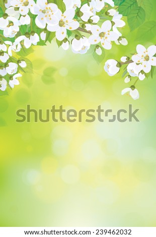 vector spring blossoming tree