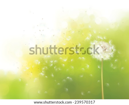 ddf060d4733ef Beautiful Blowball Dandelion Vector Background - Download Free ...