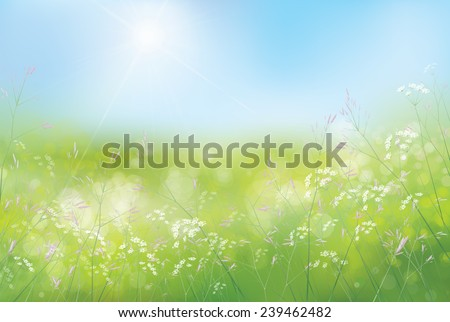 vector spring floral