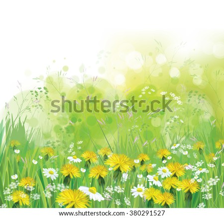 vector spring  nature