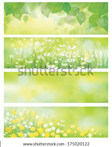vector  spring nature banners