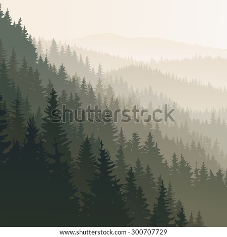 vector square landscape of wild