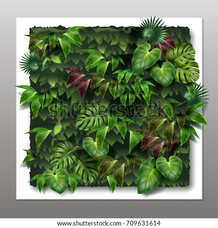 Vector square vertical garden or green wall with tropical green leaves, close-up on gray background