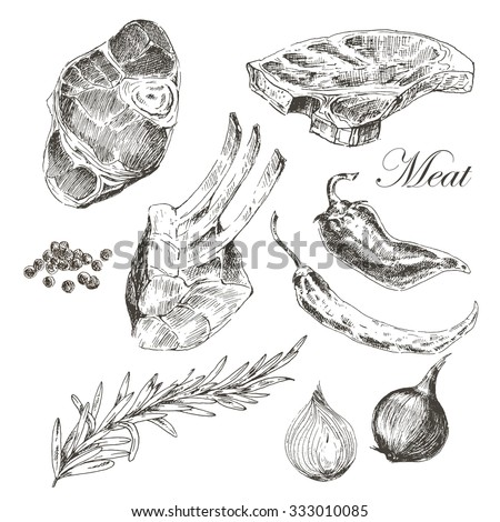 vector steak meat hand drawing