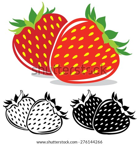 vector strawberry pair of