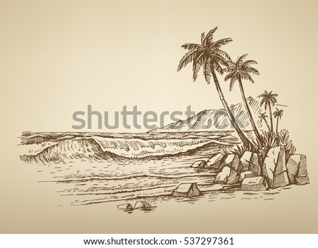vector summer beach with palm