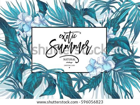 vector summer blue natural...