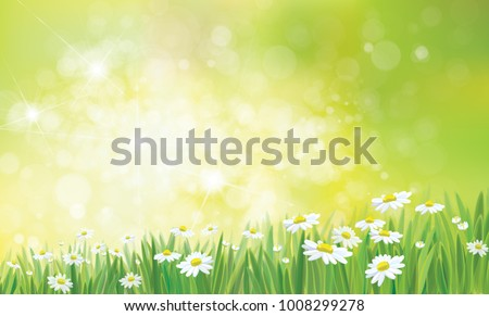 vector summer   green   nature