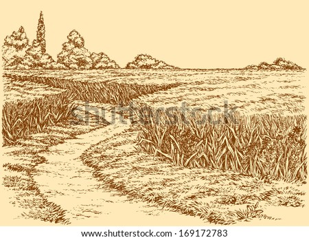 vector summer landscape a dirt