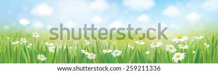 vector summer landscape  blue