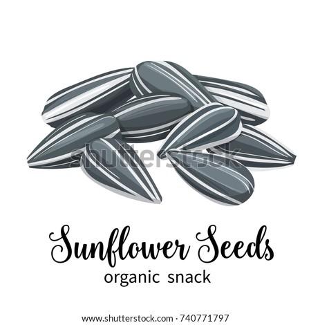 vector sunflower seeds in