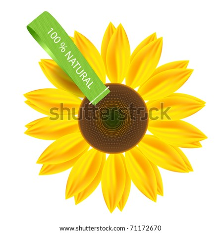 vector sunflower with fabric