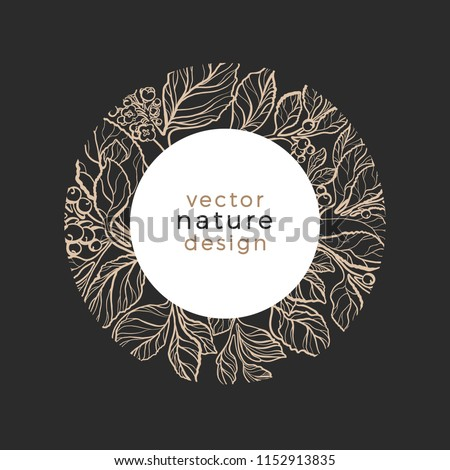 Vector template Design organic plant Symbol nature card of mate tree Art line style Narural leaves, berry, flower Round frame in circle Tropic sketch illustration Nature background Floral logo, symbol