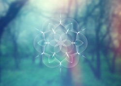 Vector template of banner, horizontal format; Spiritual sacred geometry;
