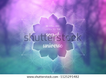 vector template of banner with