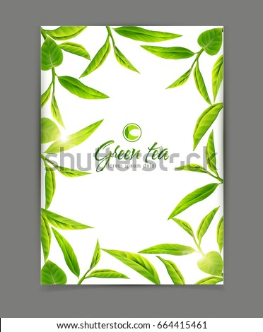 Vector template with a frame of green tea leaves, isolated on white background. Illustration for advertising, brochures, flyers, modern promotion.