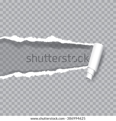 vector transparent ripped paper