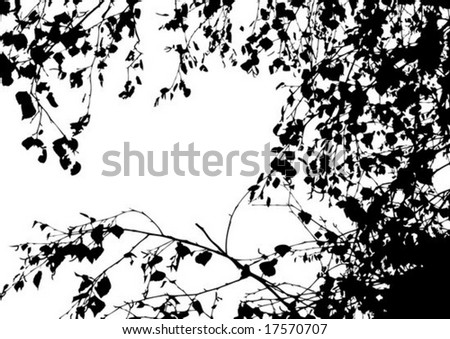 tree silhouette vector. stock vector : Vector tree